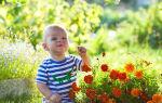 Поллиноз у детей – счастливое детство без сезонной аллергии
