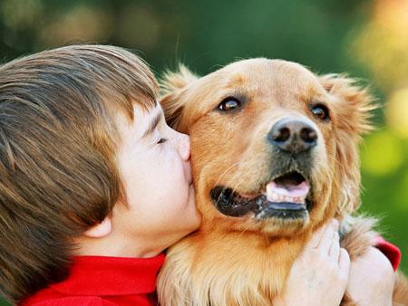 Аллергия на собаку у ребенка