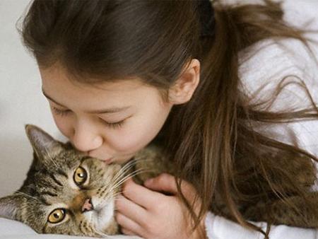 Причины аллергии на кошек