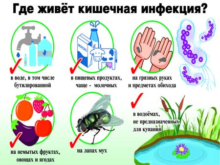 Причины кишечной инфекции у детей